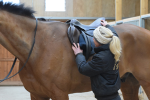 G&T Saddles | Independent Saddle Fitters | Saddle Fitting